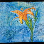 Day Lilly Tyvek